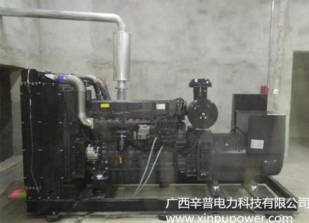 合浦某房地产采购主用280KW/备用300KW柴油发电机组合同案例
