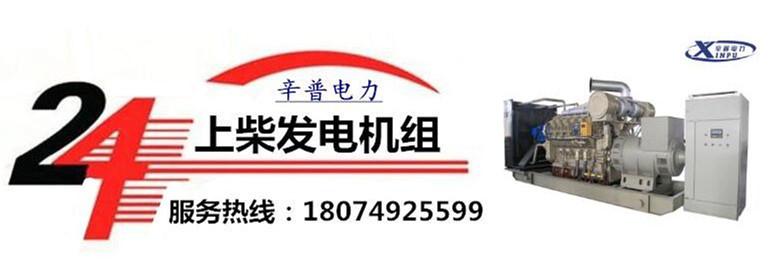 广西上柴发电机组售后服务电话18074925599