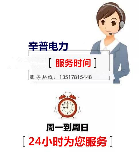 广西重庆康明斯柴油发电机组的维护