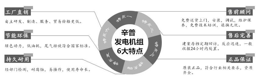 新浦发电机组6大特点